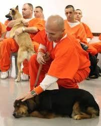 pet therapy prigioni