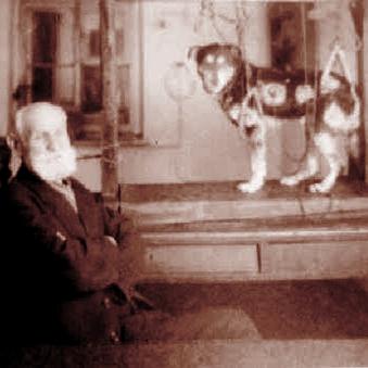pavlov_dog_psicotecnica